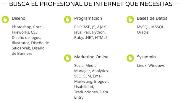 profesionales de internet